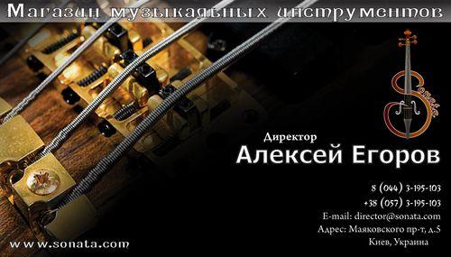 Sonata визитка Директор