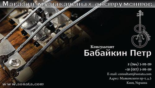 Sonata визитка Консультант